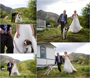 bride and groom portraits with dog, historic schoolhouse, golden, colorado wedding photographer, mountain wedding planner