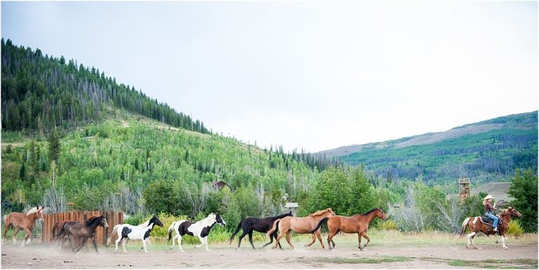 horses running,C Lazy U Ranch, Granby, Colorado, Rustic Ranch Wedding, Colorado Wedding Planner, Mountain Wedding Photographer
